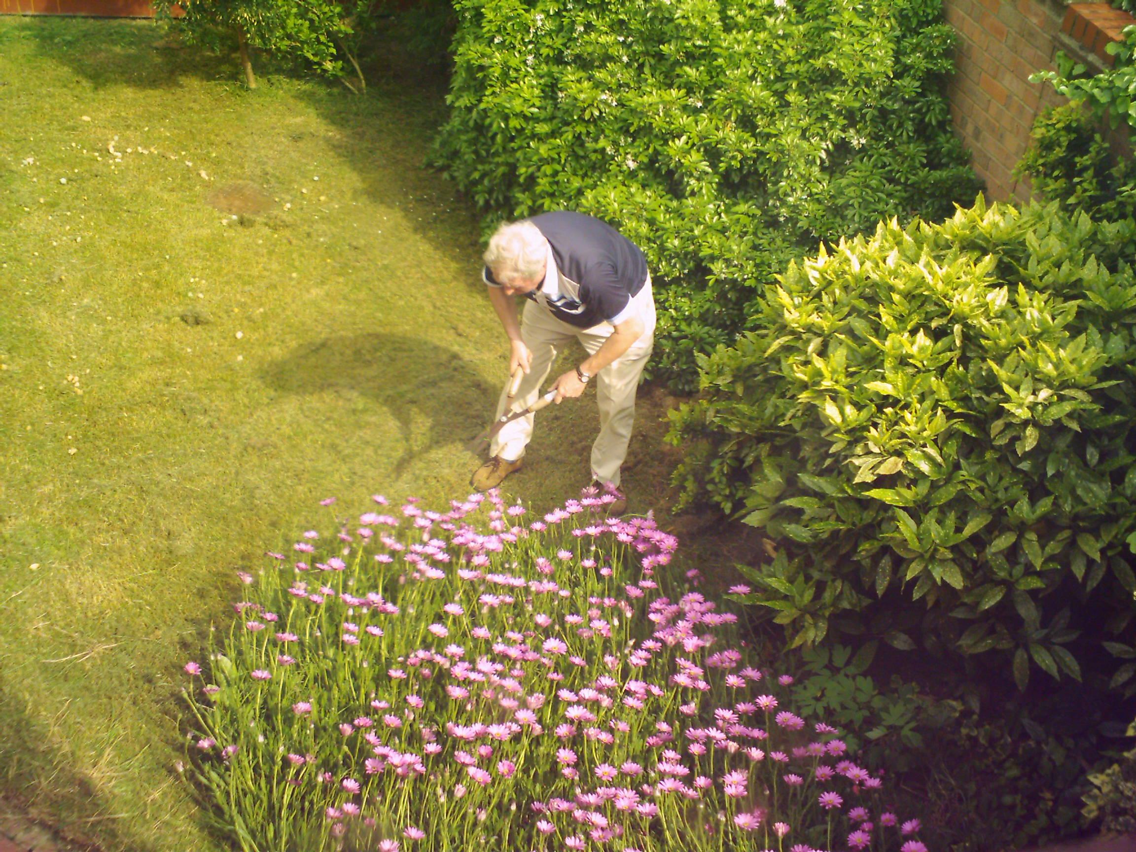 Regalos para papás jardineros 1