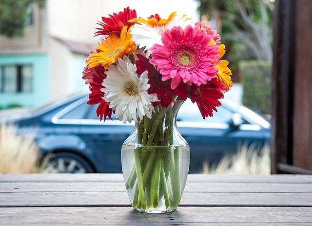 Flores duren más 1