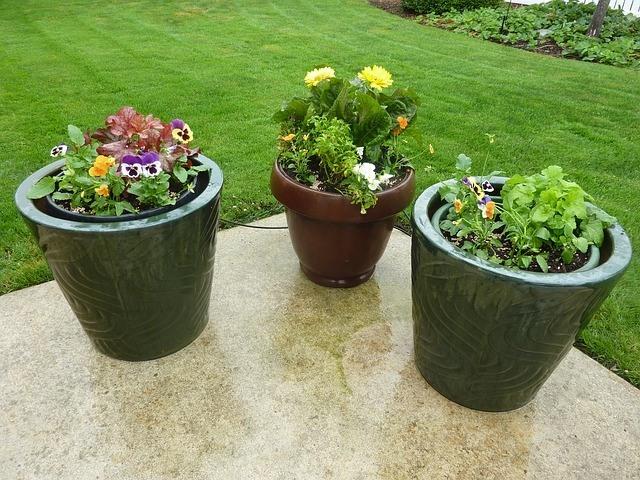 Ahorrar en la decoración de jardines 1