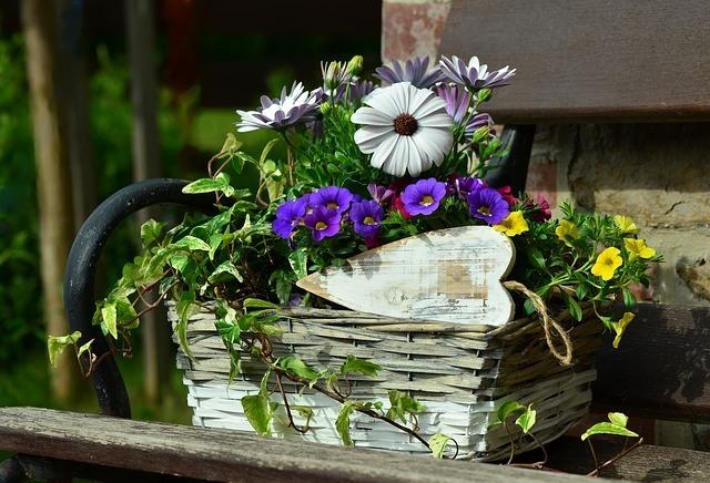 Ahorrar en la decoración de jardines 4