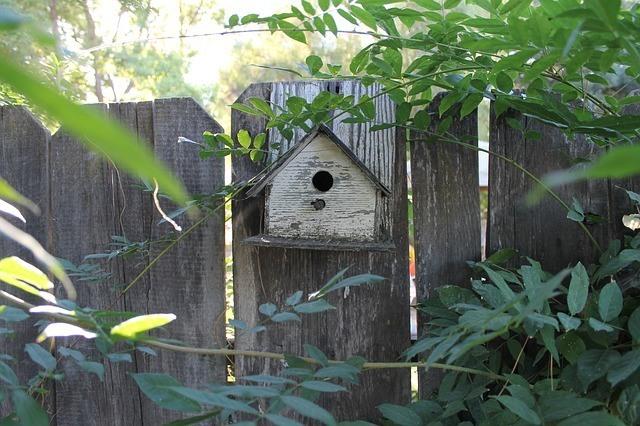 Diseñar un jardín rústico 1