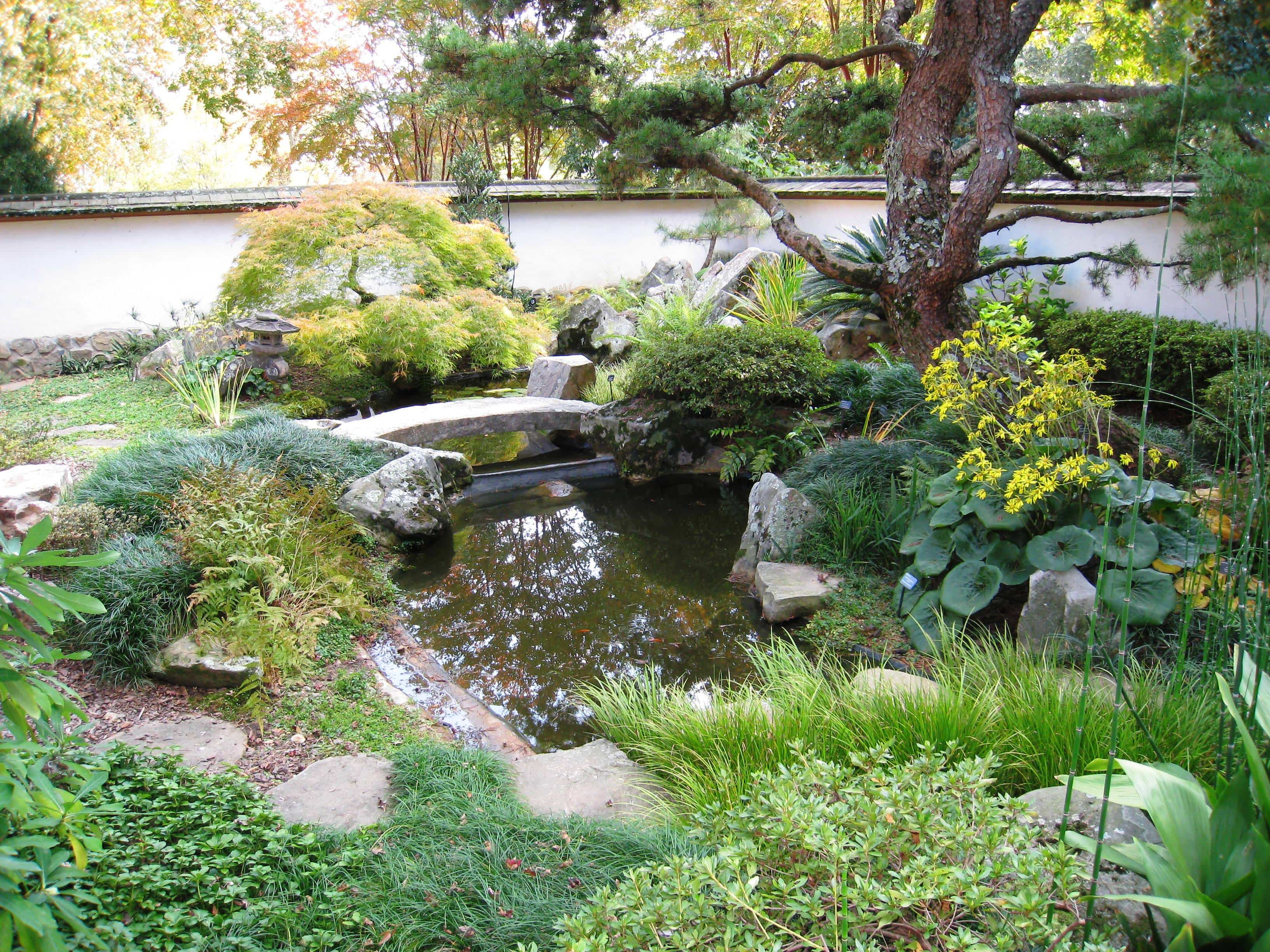 Jardines japoneses 4