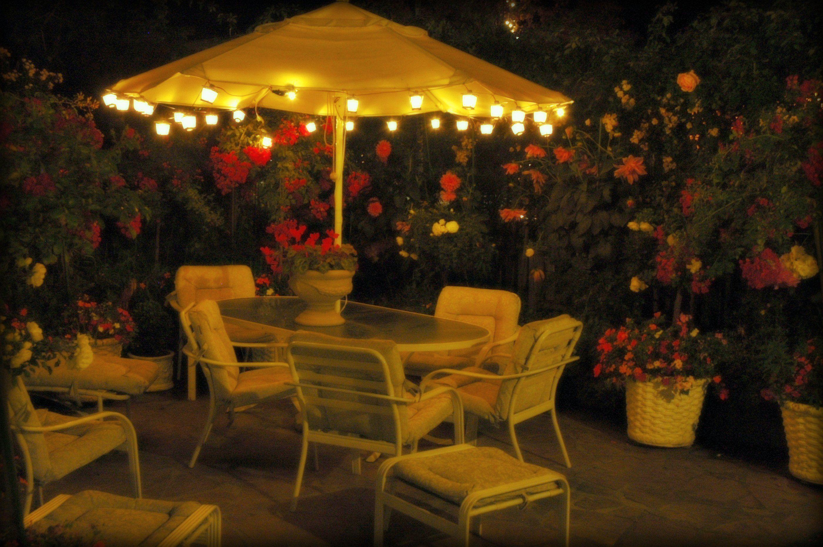 iluminación para disfrutar el jardín 3
