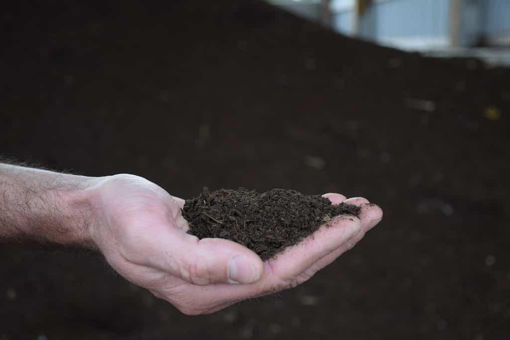 Como fabricar un compost
