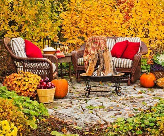 Cómo aprovechar el jardín en otoño