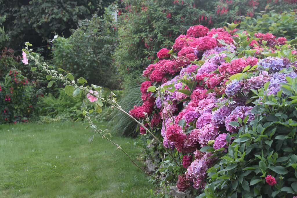 Diferentes herramientas necesarias para el jardin