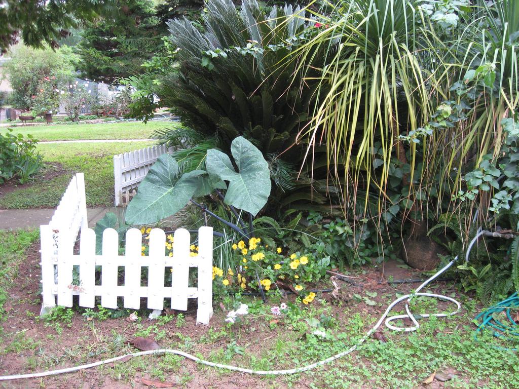Cuidados básicos para el jardín al llegar el invierno