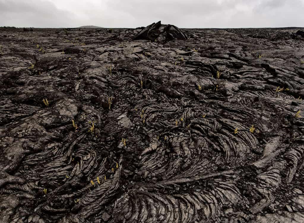 Algunas de las las propiedades del suelo