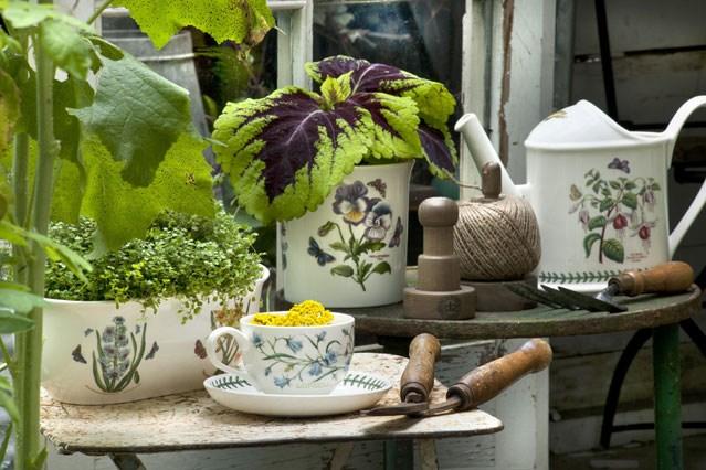 decoración de jardín interior