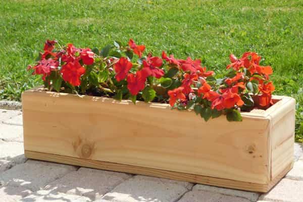 Blog Página 22 De 240 Ideas Para Jardines Y Decoración