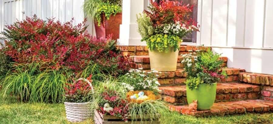 decoración de jardines exteriores