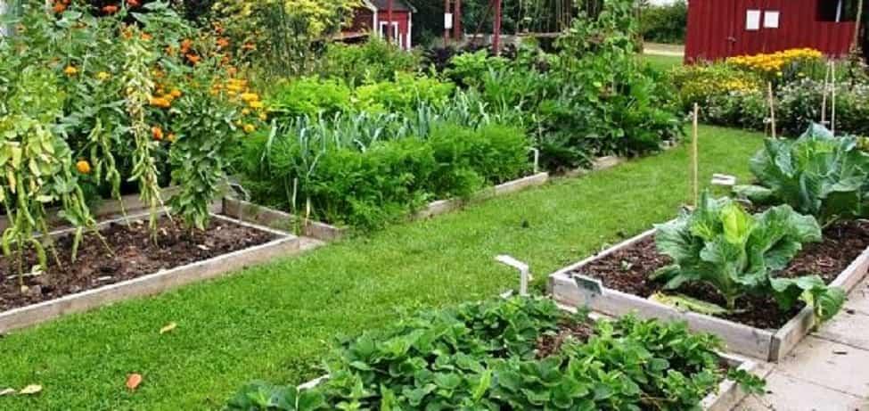 tareas de jardinería