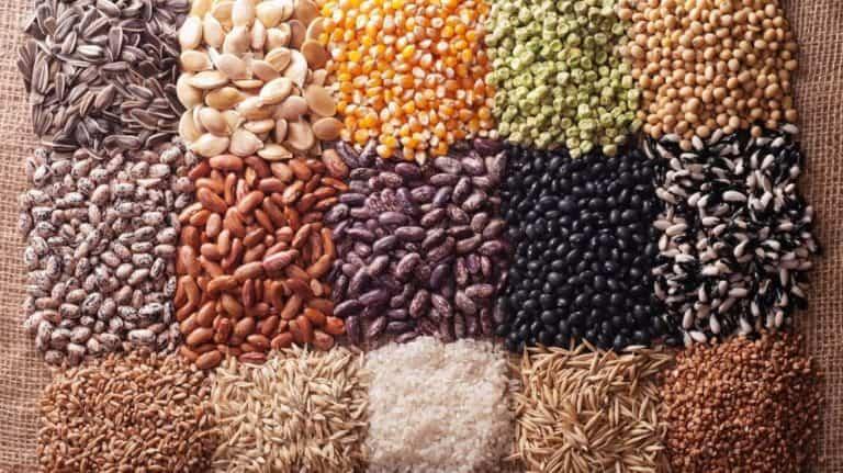Consejos para recoger semillas de la huerta