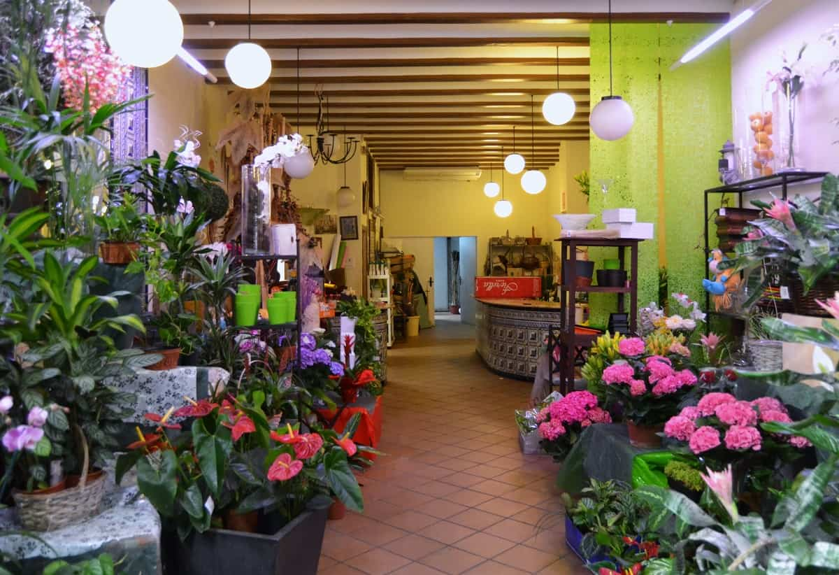 tienda floristeria