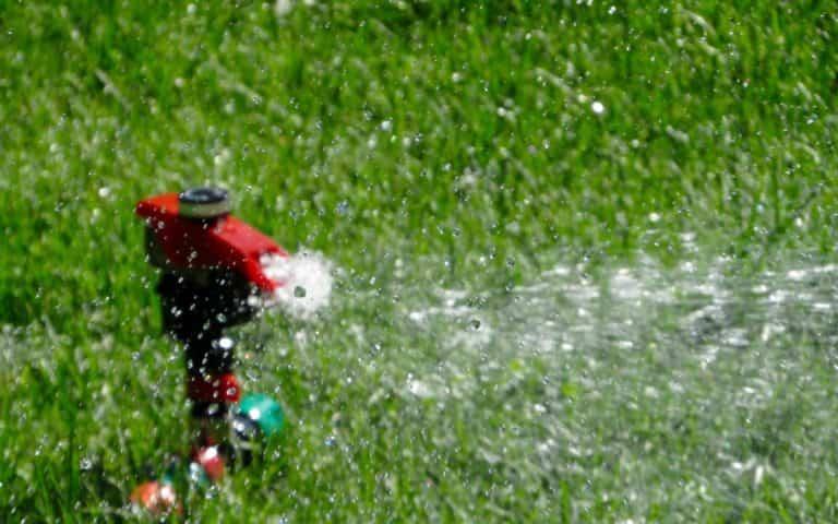 Consejos para ahorrar agua en el cuidado del jardín