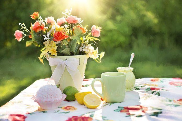 jardin en casa para estar felices