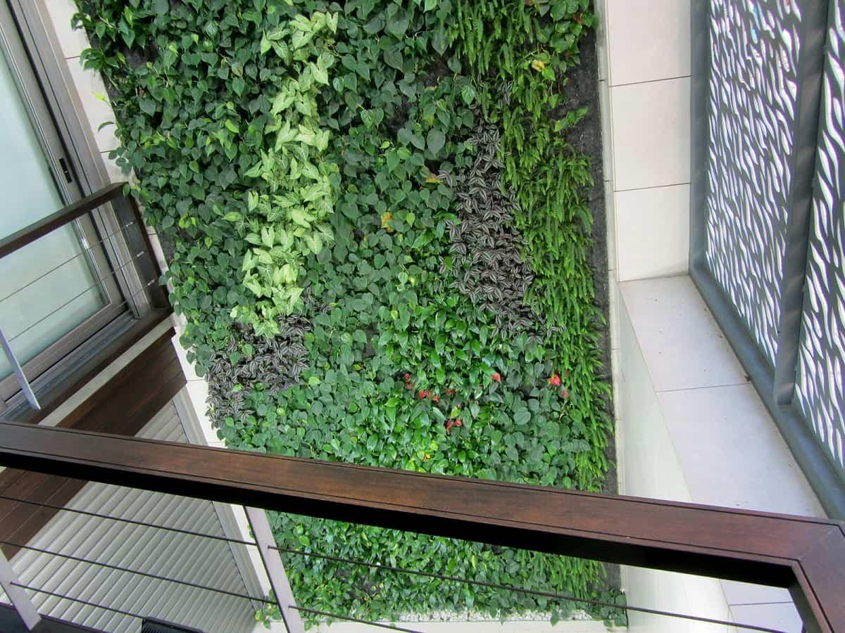 jardin vertical villarreal 2