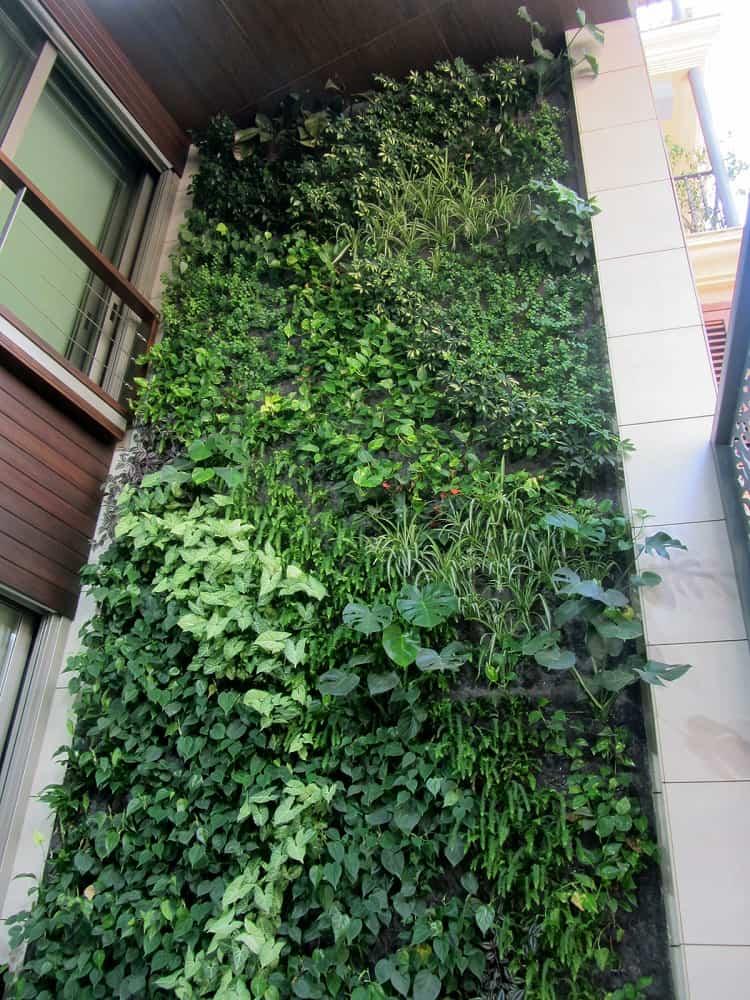 jardin vertical villarreal 3
