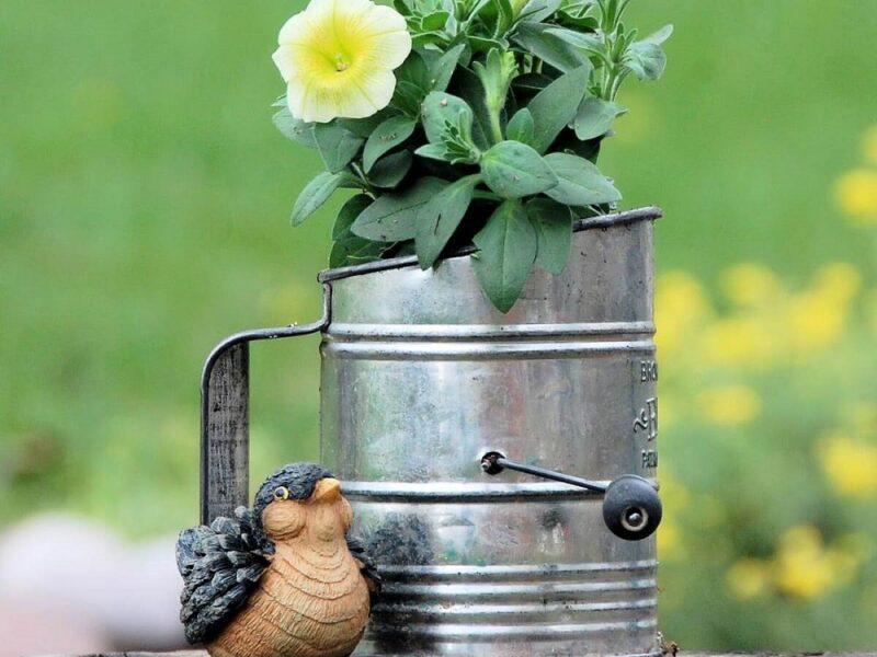 ideas de jardineria