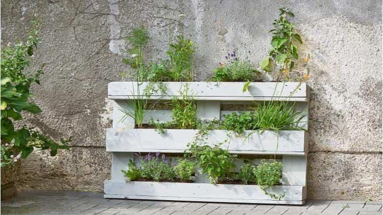 jardines verticales 4