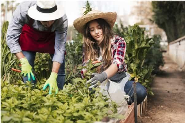 prepara un taller en tu jardin