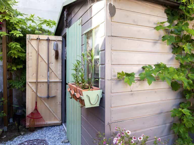 Consejos e ideas para tener tu jardín ordenado durante el invierno